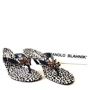 Manolo Blahnik Calto Black